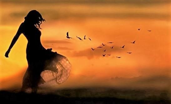 silhouette freedom.jpg