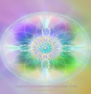 consciousness-ascension-field
