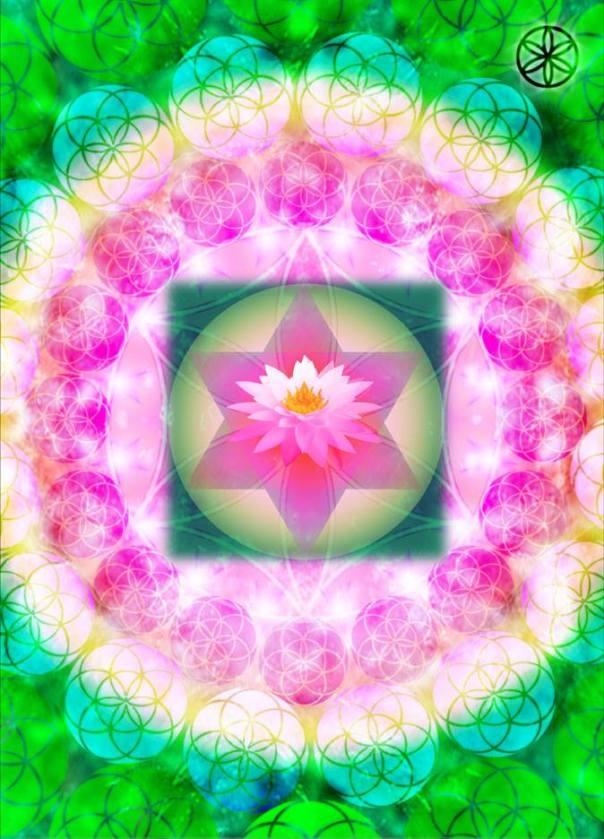 Lotus merkabah.png
