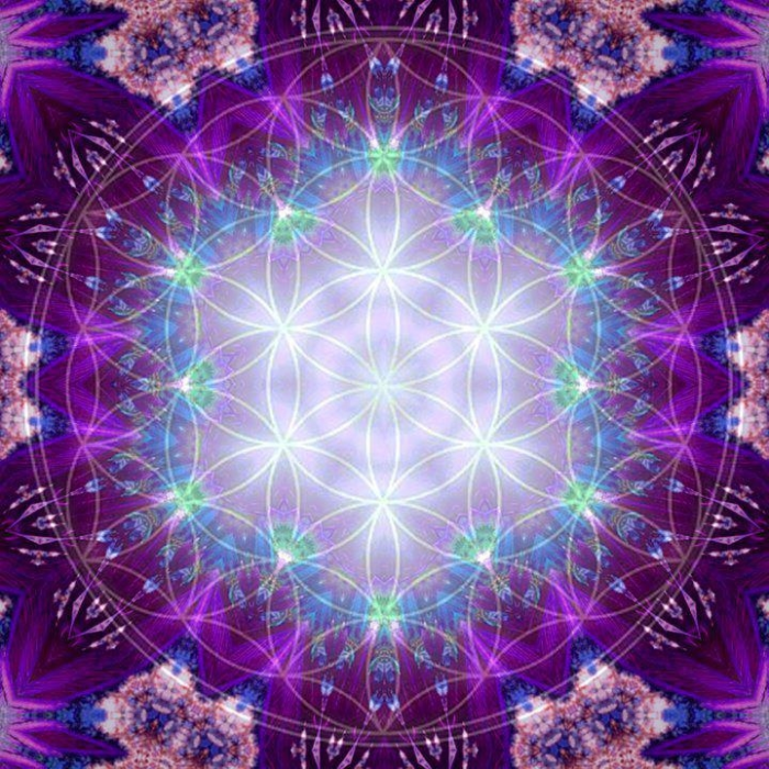 flower of life magenta.png