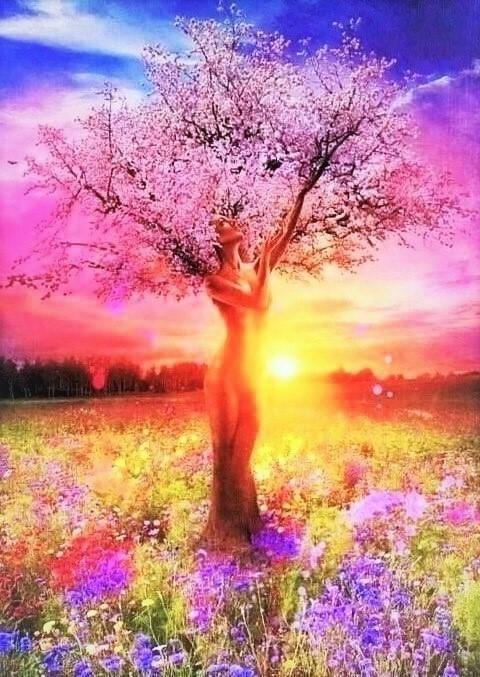 The Tree of Life (3)